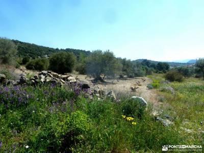 Cebreros-La Merina-Río Alberche;mesa de los tres reyes ruta rio borosa espiguete